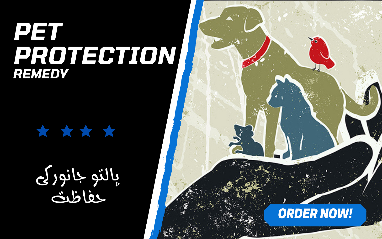 Will Cast a Pet Protection Spell for Your Beloved Pet